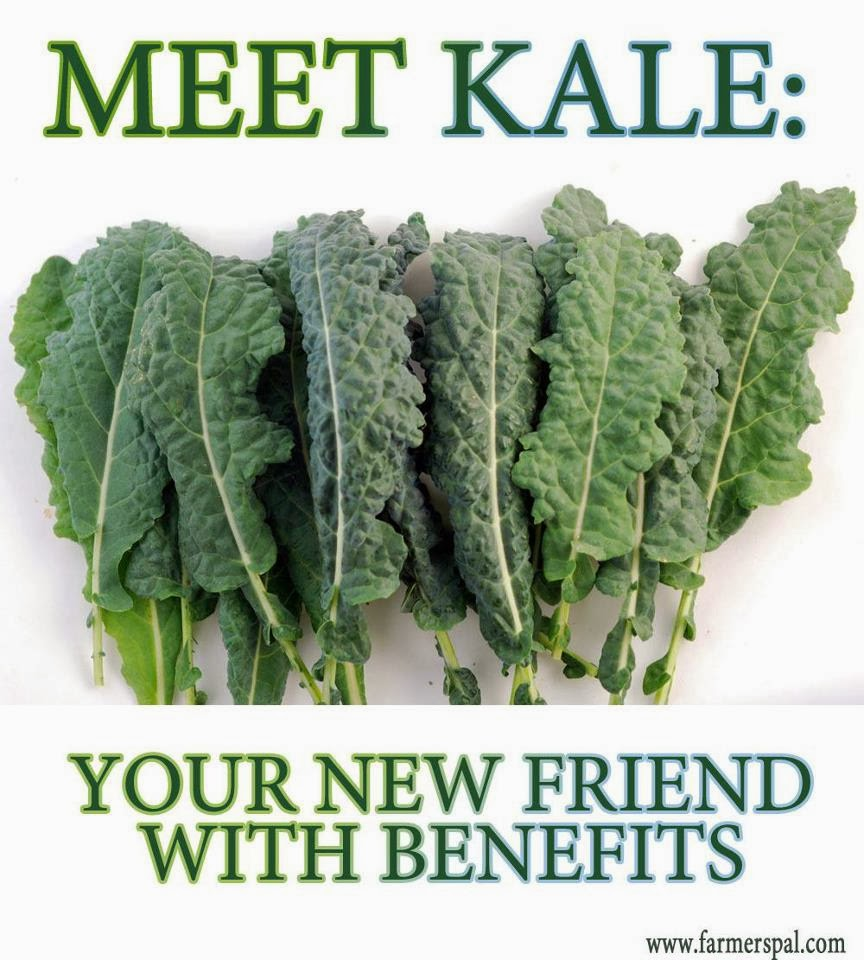 How good is kale for you really